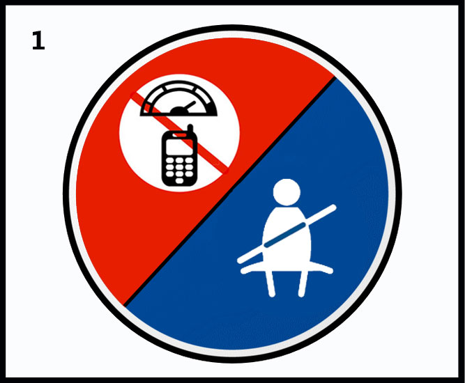 The 12 Life Saving Rules